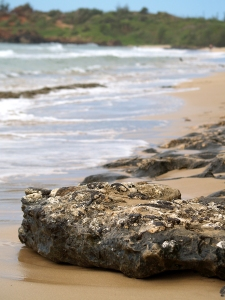 Beach Rock 2 email